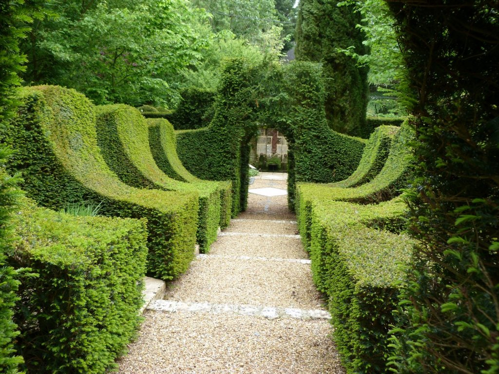 727-jardin-manoir-chalaison-maine-et-loire.jpg
