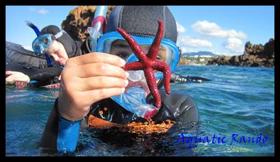 2753-aquatic-randoaquatic-rando-randonnee-palmee-(6).jpg