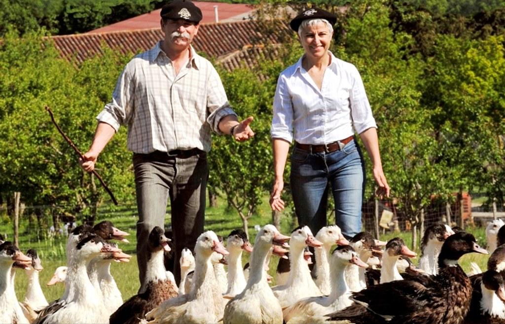 46-musee-du-foie-gras-de-souleilles.jpg
