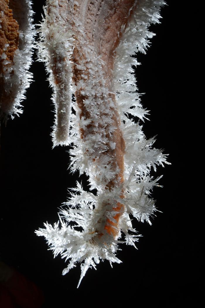 66-grotte-clamouse-aniane-aragonite-2.jpg