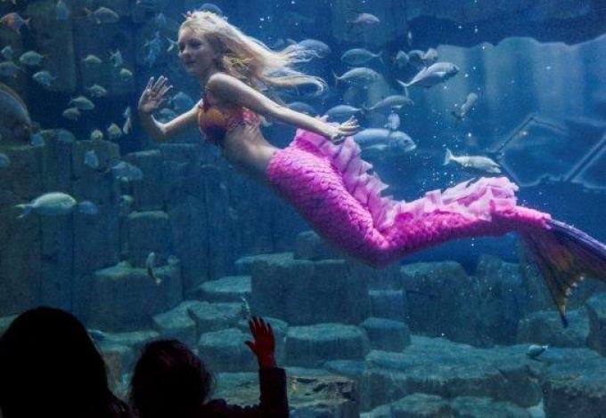 aquarium-de-paris-sirene-fev2016.jpg