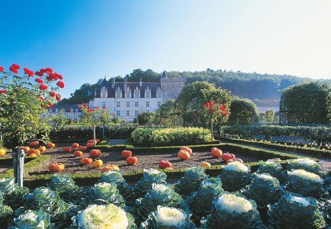 85-chateau-jardins-villandry-centre(2).jpg