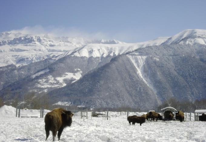 112-avc-la-neige.jpg