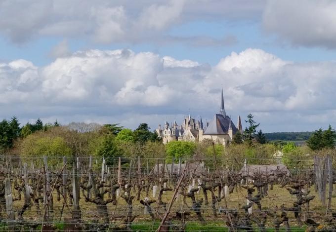 115-chateau-montreuill-belay.jpg