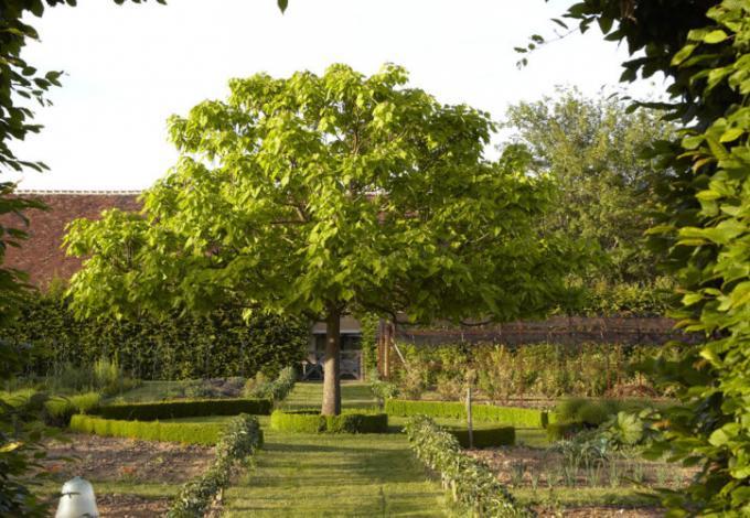 149-le-jardin-de-la-borde-1-800x500.jpg