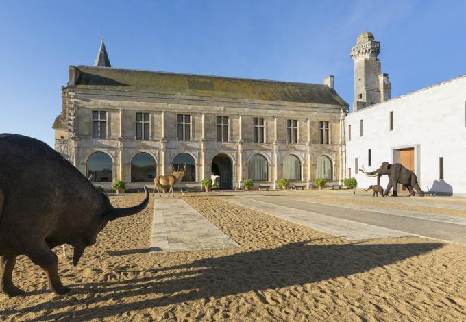157-musee_prehistoire_grand_pressigny_credit_stevens_fremont-(2).jpg