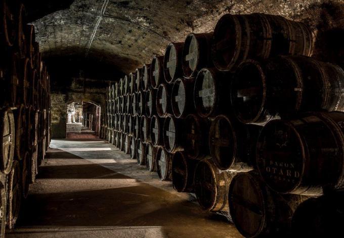 Chateau-cognac-chai-des-voutes-basses.jpg