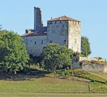 224-chateau_de_madaillan_-4.jpg