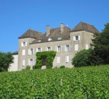 231-chateau-de-la-greffiere-bourgogne-oenotourisme-musee.jpg