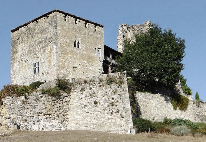 224-chateau_de_madaillan_-1.jpg