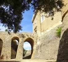282-chateau-de-suze-la-rousse-drome.jpg