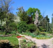 290-jardin-botanique.jpg