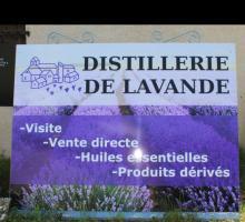 408-distillerie-lavande-bio-pusteaux.jpg