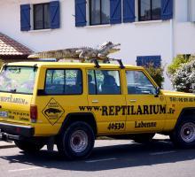 449-reptilarium-labenne.jpg