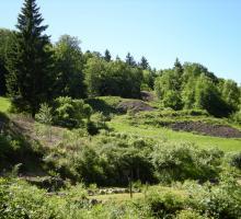 697-les-hautes-mynes-du-thillot-vosges.jpg