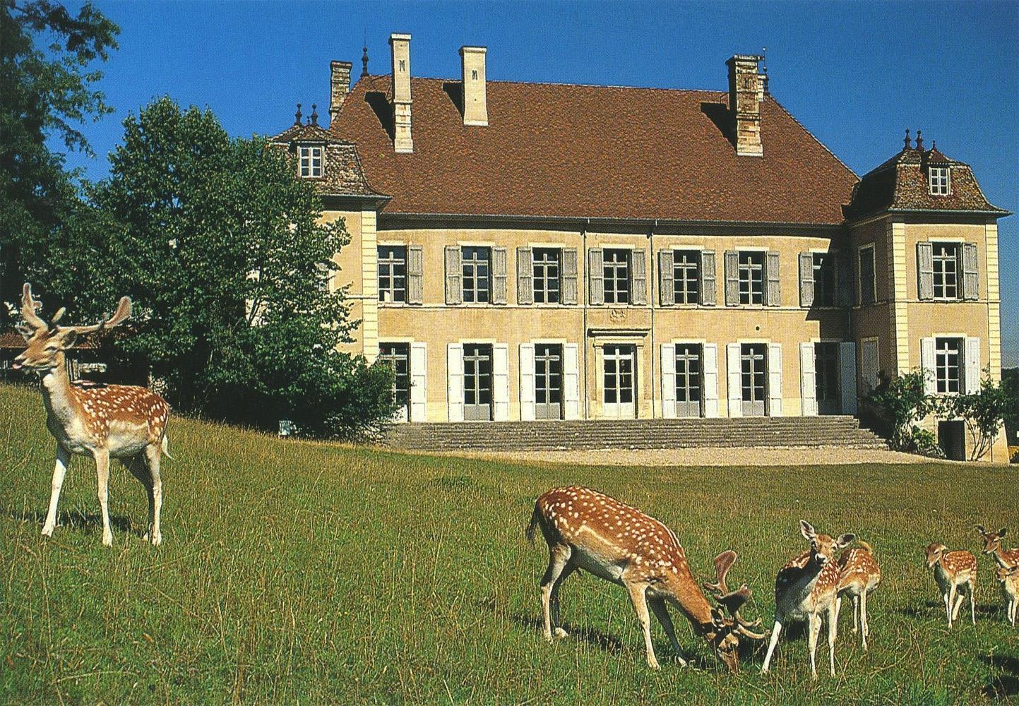 376-chateau-de-moidiere.jpg