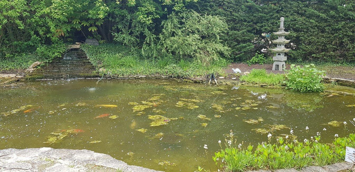 524-parc-jardin-aquatique-ain.jpg