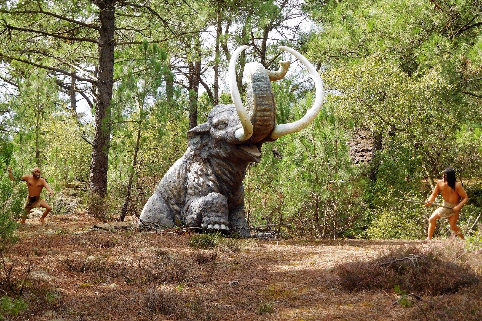 540-parc-prehistoire-malansac.jpg