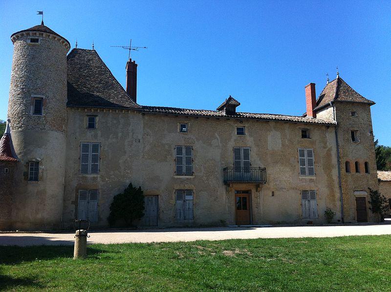 713-chateau-sance-lapalus-maine-et-loire.jpg