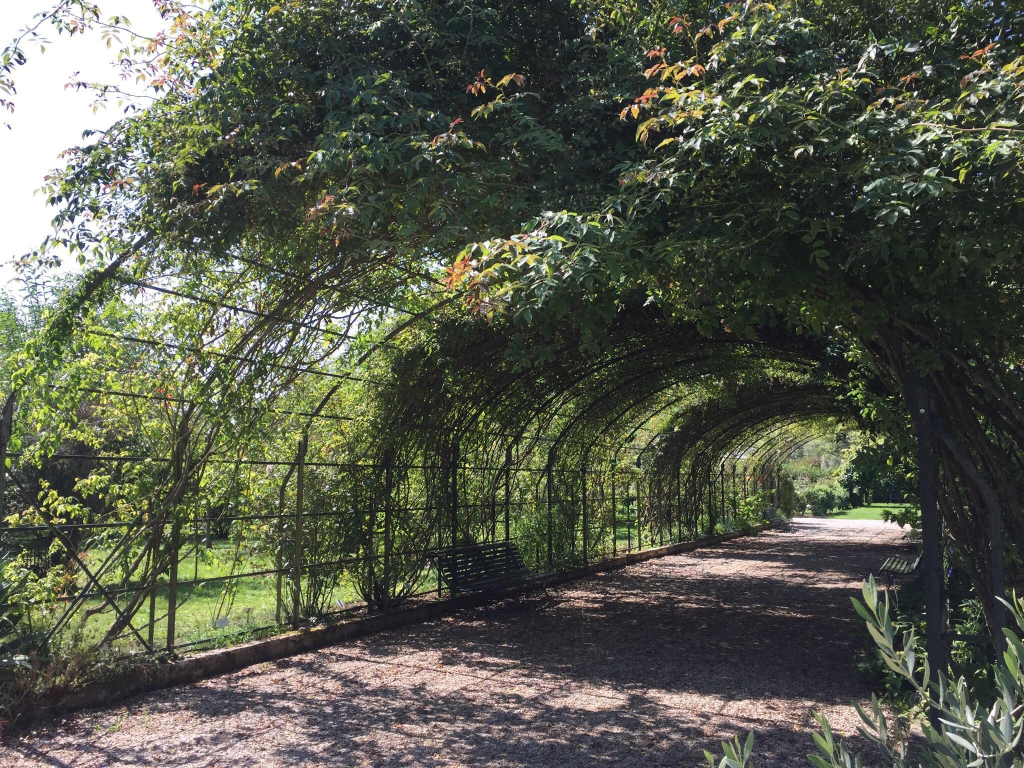 1529-jardin-botanique-marnay-sur-seine-aube.jpg