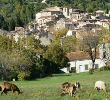 1005-seillans-plus-beaux-villages-de-france-var.jpg