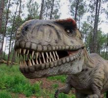 1035-dinosaures-parc-40.jpg