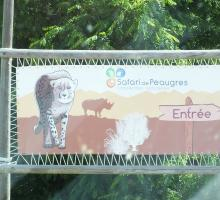 1152-safari-peaugres-ardeche.jpg