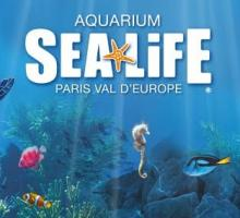 1165-aquarium-val-europe.jpg