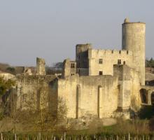 1232-chateau_de_rauzan-gironde-nouvelle-aquitaine.jpg
