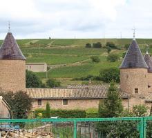 1255-chateau_chasselas-saone-et-loire.jpg