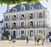 1331-maison-magie_blois-41.jpg