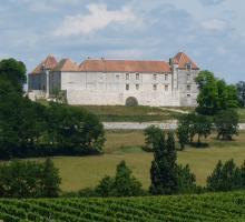 1598-loubes-bernac-theobon-chateau-47.jpg