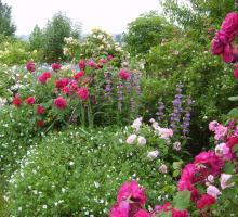 1607-le-jardin-de-mireille-47.jpg