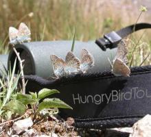 1631-hungry-bird-tours-aveyron.jpg