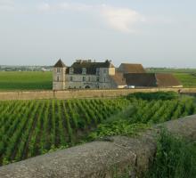 1733-chateau-clos-vougeot-21.jpg