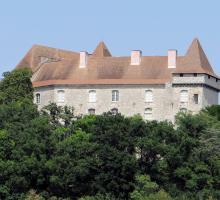 1892-chateau_de_goudourville_82.jpg