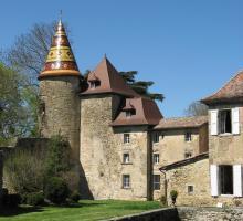 1969-chateau-de-vallin-saint-victor-de-cessieu-isere-auvergne-rhone-alpes.jpg