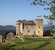 821-le_chateau_cheylard-_-d'aujac_gard.jpg
