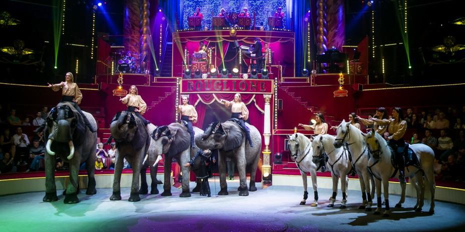 2159-cirque-d'hiver-bouglione-paris-75.jpg