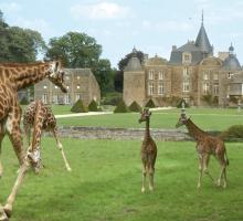 1239-chateau-et-zoo-bourbansais-35.jpg