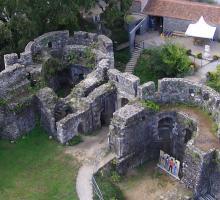 2130-chateau_d'oudon_loire-atlantique-bretagne.jpg