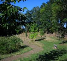 2170-arboretum-du-lys-campagnat-creuse.jpg