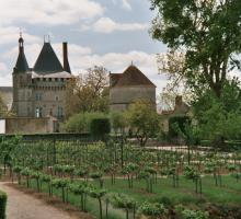 2233-chateau-de-talcy-41.jpg