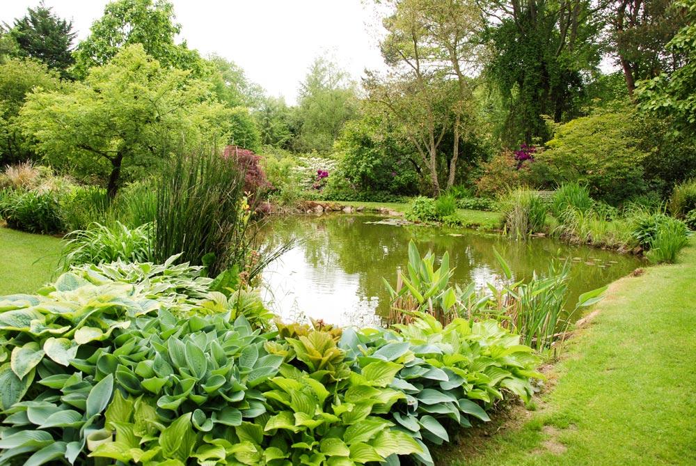 2374-jardin-pefoliere-cuguen-35.jpg