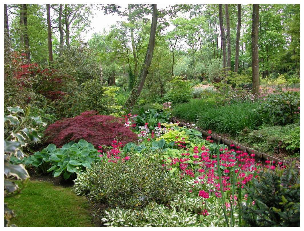 2514-jardin-arboretum-ilex-45.jpg