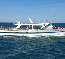 2638-diane-3-bateau-l'etoile-de-thau-iv.jpg