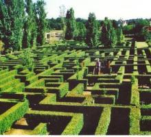 2643-labyrinthe-le-minotaure-lot.jpg