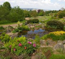 2660-jardin-botanique-du-montet.jpg