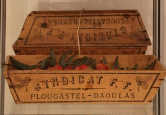 228-plougastel-musee-fraise-barquette.jpg