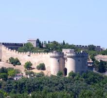 2221-fort-saint-andre-villeneuve-les-avignon.jpg
